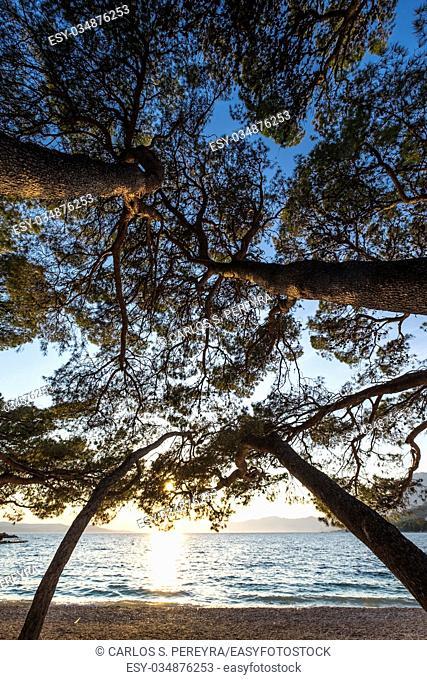 Beach in Makarska Rivera in Croatia Europe