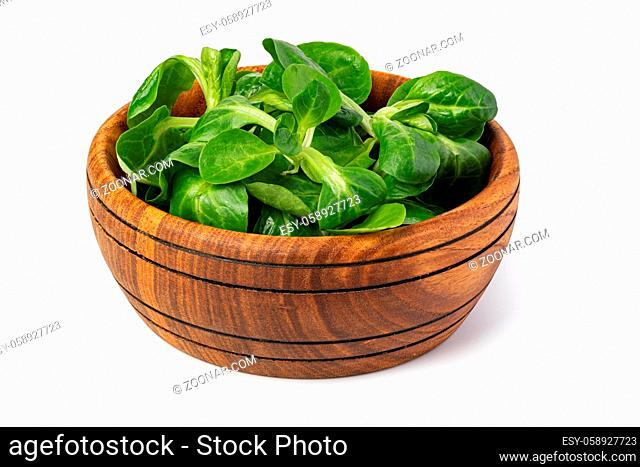 Corn Salad Leaves isolated on white background