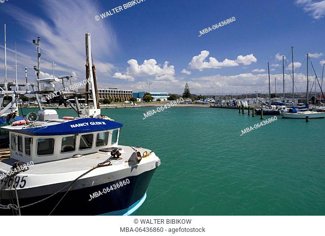New Zealand, North Island, Hawkes Bay, Napier, Inner Harbour, fishing boat