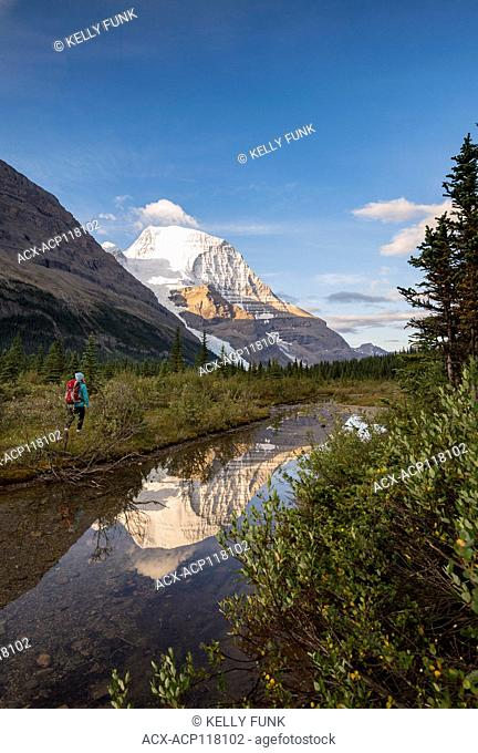A young woman hikes the Berg lake trail with Mt. Robson's reflection and Rearguard mountain in the foreground, Mt. Robson Provincial Park, British Columbia