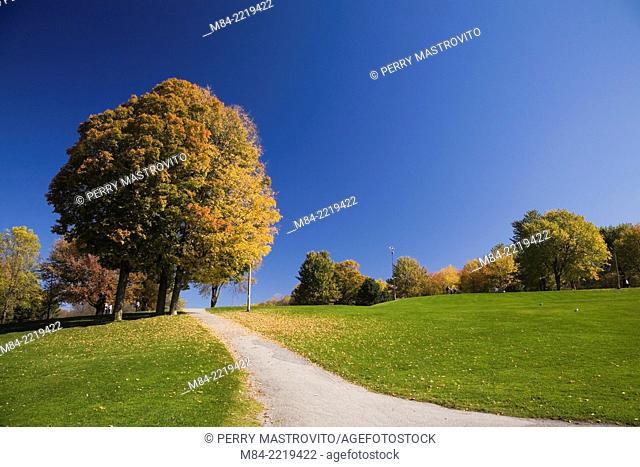 Asphalt footpath through Mount Royal Park in autumn, Montreal, Quebec, Canada