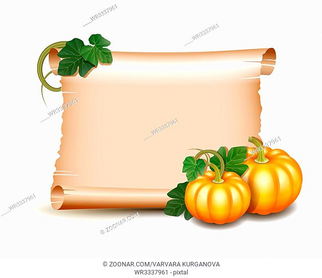 Thanksgiving banner, card with empty paper scroll and pumpkins with leaves. Blank scroll of parchment wallpaper, background