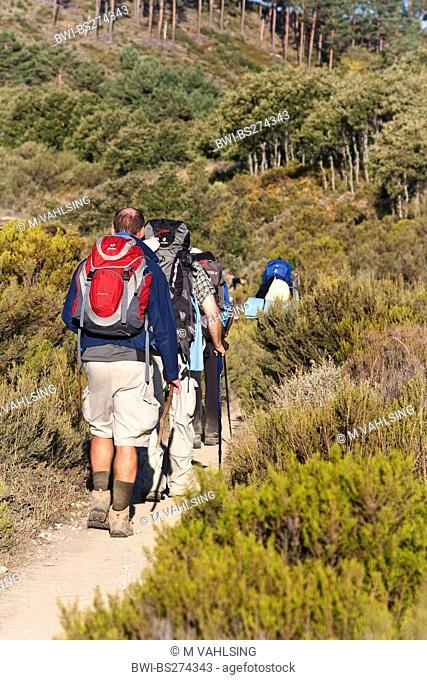 pilgrims on the way to El Acebo, Spain, Leon, Kastilien