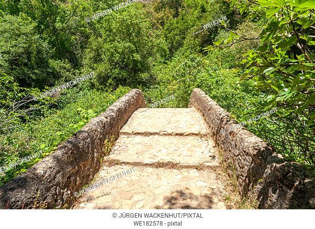 The roman bridge Pont des Tuves on the river Siagne, Saint-Cezaire-sur-Siagne, Alpes-Maritim, Provence-Alpes-Cote d`Azur, France, Europe