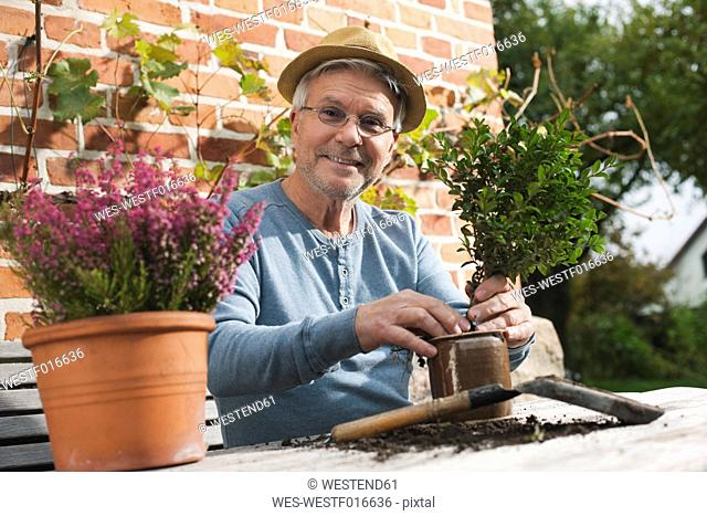 Germany, Kratzeburg, Senior man doing flower gardening