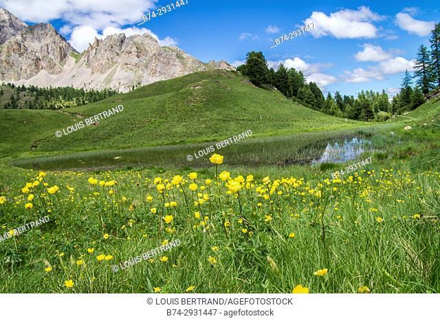lake of the qeyras regional park. France