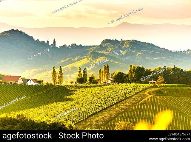 South styria vineyards landscape panorama, near Gamlitz, Austria, Eckberg, Europe. Grape hills view from wine road in spring