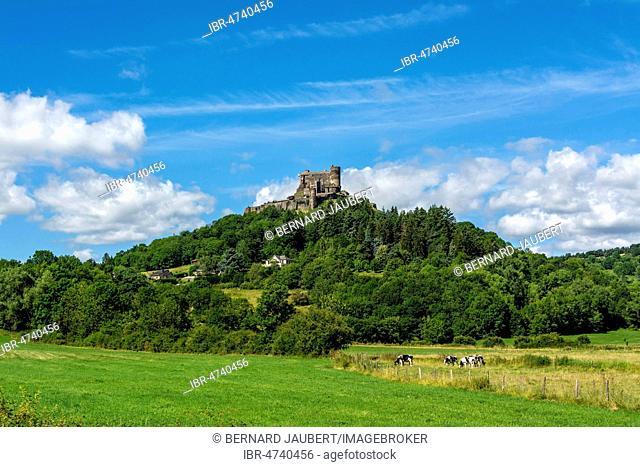 Murol castle, Auvergne Volcanoes Natural Park, Puy de Dome department, Auvergne Rhone Alpes, France