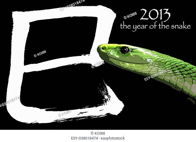 According to the Chinese zodiac, 2013 will be the year of the Snake. The chinese letter means SNAKE