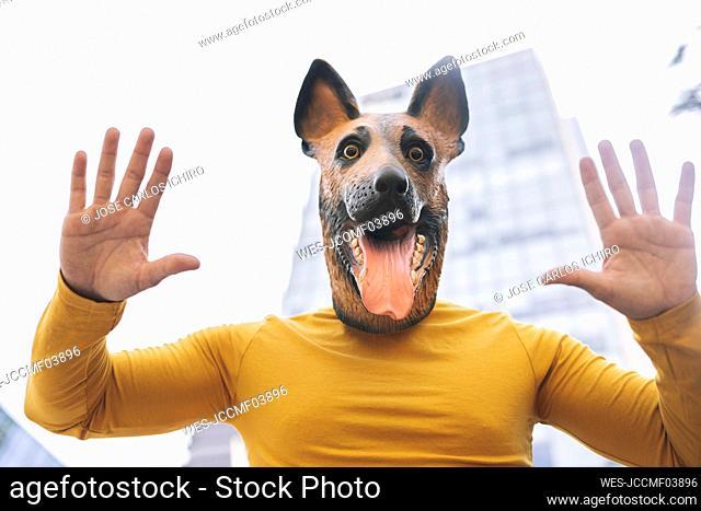 Man wearing dog mask raising hands