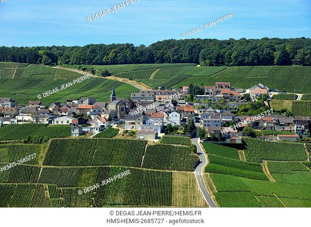 France, Marne, Monthelon, Cote des Blancs, village in the middle of the vineyards of hillside Champagne