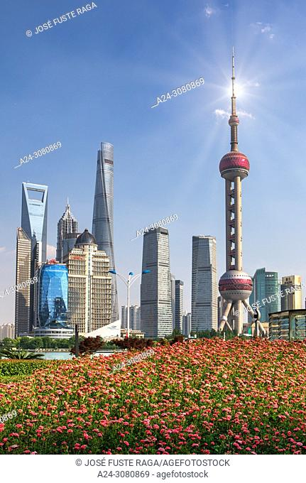China, Shanghai City, Pudong District, Lujiazui Area, World Financial Center, Shanghai Tower and Oriental Pearl Tower, flowers