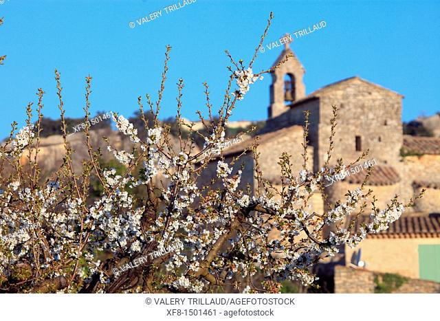 The Provence village of Saint Pantaleon, Vaucluse, Luberon, Provence-Alpes-Côte d'Azur, France, Europe