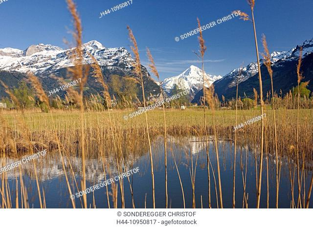 Switzerland, Europe, mountain, mountains, river, flow, brook, body of water, waters, water, canton, UR, Uri, reed, spring, Reuss delta, Bristenhorn