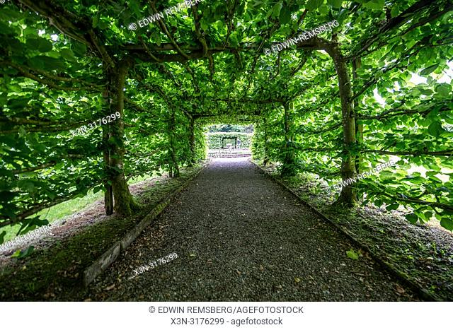 Symmetric pathway through a canopy, Levens Hall , Kendal, Cumbria , UK