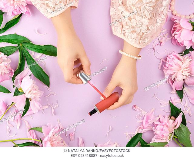 female hands with smooth fair skin keep liquid red lipstick in a tube on a lilac background with pink peonies, top view