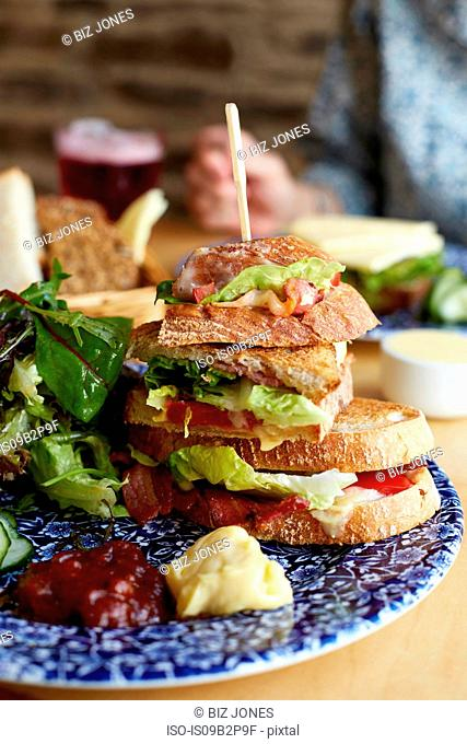 Sandwich on plate with salad, close-up
