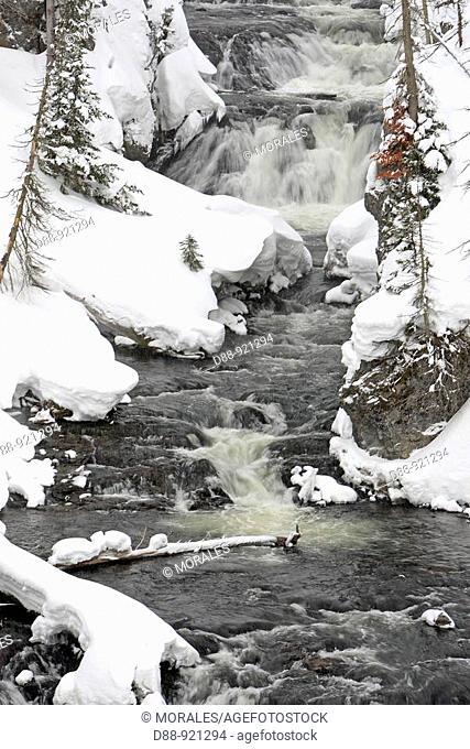 Chute d'eau de la riviere Gibbon a Yellowstone national park Gibbon falls