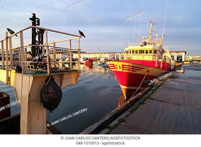 Fishing port of Santander. Cantabria. Spain