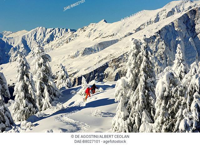Skiers above Malga Zambana, Paganella, snowy landscape, Trentino-Alto Adige, Italy