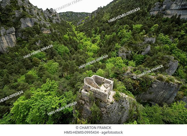 France, Aveyron, Parc Naturel Regional des Grands Causses (Natural regional park of Grands Causses), Peyre, labelled Les Plus Beaux Villages de France (The Most...