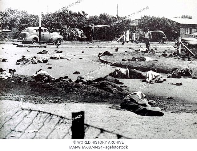 Photograph of dead bodies in the forecourt of the Sharpeville police station in South Africa. Dated 20th Century