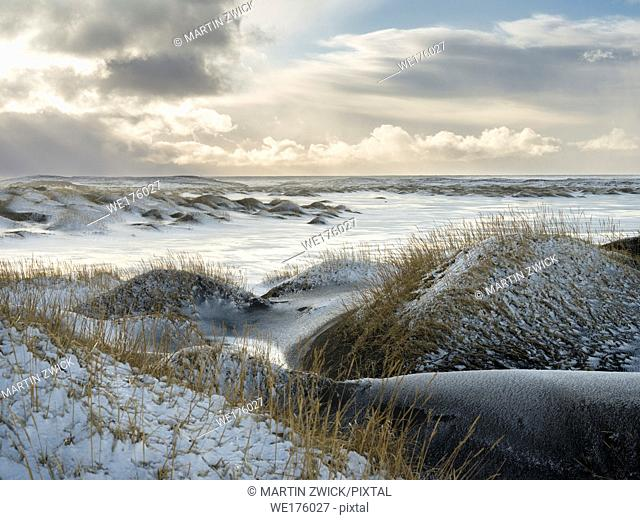 Coastal landscape with dunes at iconic Stokksnes during winter and stormy conditions. europe, northern europe, iceland, february
