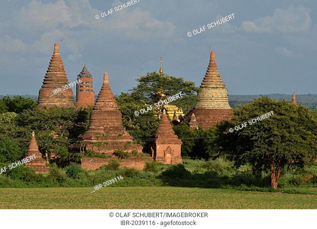 Pagoda field, Buddhist pagodas, Old Bagan, Pagan, Burma, Myanmar, Southeast Asia, Asia