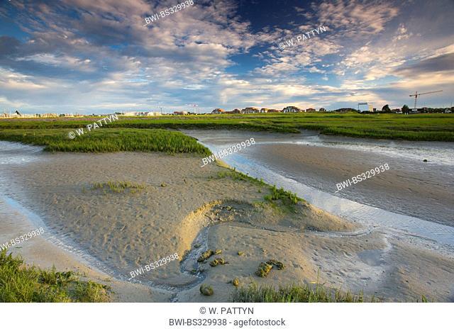 Mudflats in the IJzermonding nature reserve, Belgium, Nieuwpoort