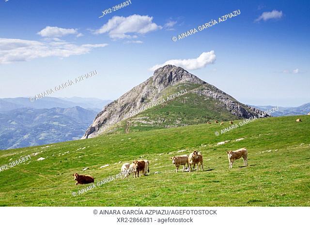 Txindoki mountain, Gipuzkoa, Basque Country