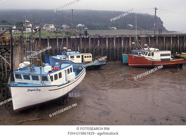 low tide, fishing boats, Bay of Fundy, NB, New Brunswick, Canada, Fishing boats docked at low tide in the harbor of the village of Alma on the Bay of Fundy in...