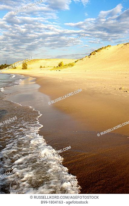 Beach Mount Baldy Dune Indiana Dunes National Lakeshore Porter Lake Michigan Indiana USA