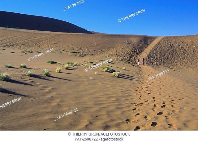Namibia, Namib-Naukluft National park, Sossusvlei, trail to Deadvlei