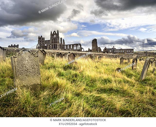 Whitby Abbey from St Marys Churchyard Whitby Yorkshire England