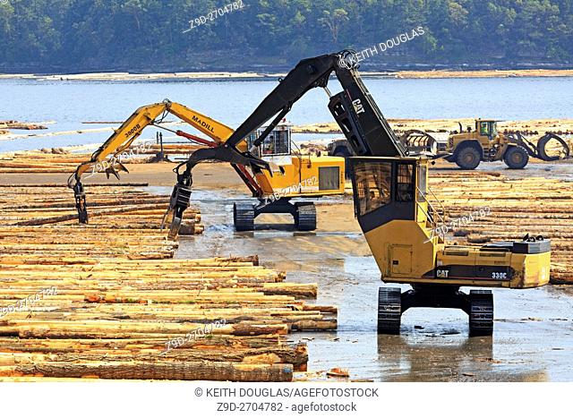 Equipment sorting logs at sawmill, Ladysmith, Vancouver Island, British Columbia