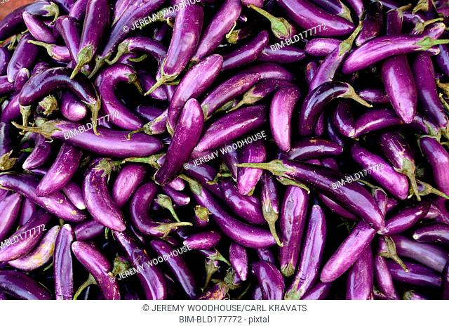 Pile of purple eggplants