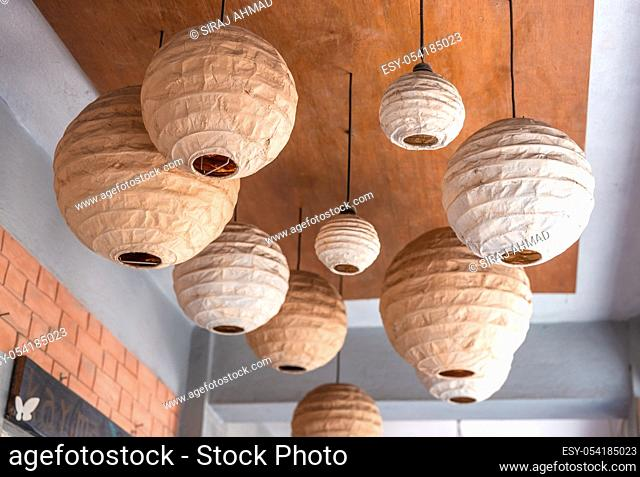 White round Chinese paper lanterns hanging from trees for wedding or party function decorations
