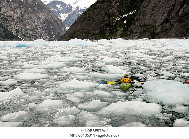 Kayaker paddling around ice floes from LeConte Glacier which is receding and showing evidence of global warming, LeConte Bay, Alaska