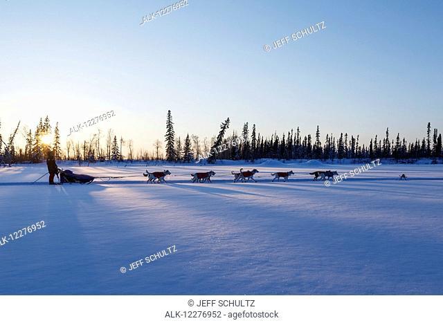 Lev Shvarts runs on the trail near sunset a few miles before the Huslia checkpoint during Iditarod 2015