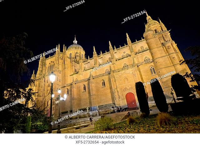 Facade of Puerta de Ramos,New Cathedral of Salamanca, Cathedral of the Asunción de María, Gothic Renaissance Baroque Style,16th-18th century