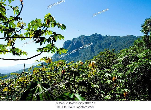 Nature, landscape, Park Estadual Pico of Marumbi, Paraná, Brazil