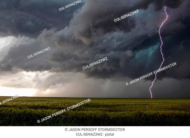 A smooth channel lightning bolt arcs to the ground through the turbulent updraft base