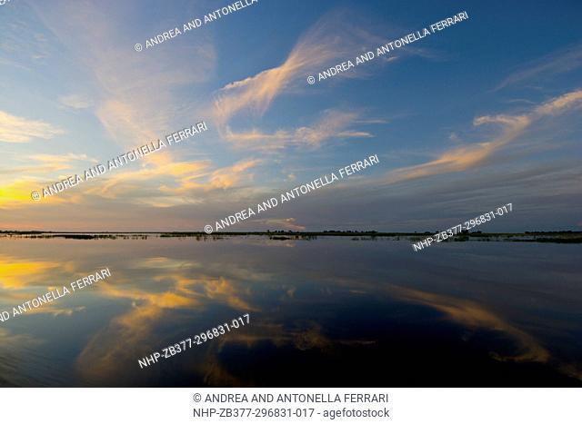 Scenic landscape, Chobe river, Chobe National Park, Botswana