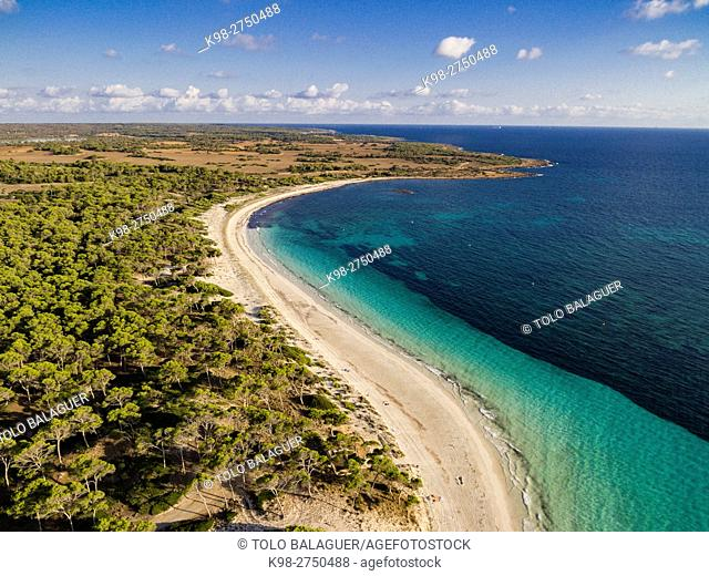 Es Carbo playa, Ses Salines, Majorca, Balearic Islands, Spain