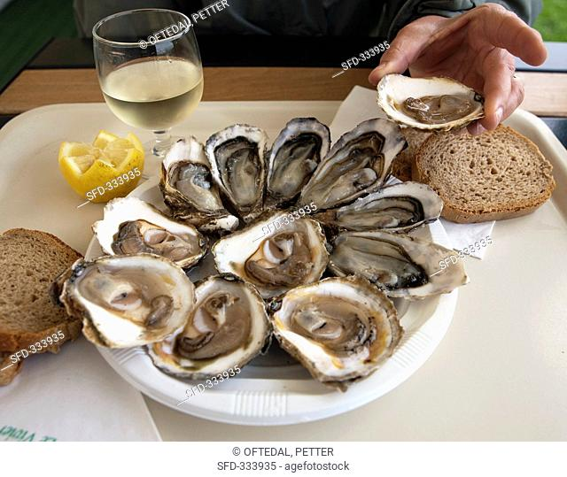 Oysters in a restaurant in Cancale Brittany
