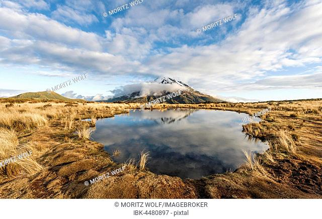 Reflection in Pouakai Tarn, stratovolcano Mount Taranaki or Mount Egmont, cloudy sky, Egmont National Park, Taranaki, New Zealand