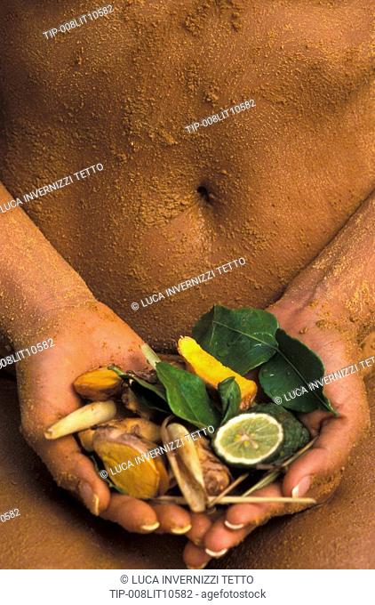 Ingredients of the thai herbal compresses and several other thai spa treatments
