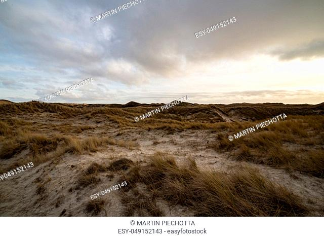 Beautiful backlit evening atmosphere of the island of Amrum. Impressive dunes in back light with light cloudy sky. The sun almost shines through