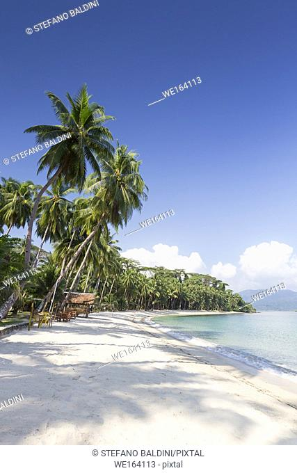 White beach, near Port Barton, Palawan island, Philippines