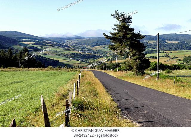Landscape, Gévaudan, Margeride mountains, Monts de la Margeride Haute Loire, Auvergne, France, Europe